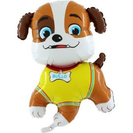 Фолиев балон куче  Було
