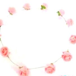 Венче с розички
