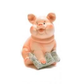 Касичка - прасенце с банкноти