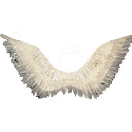 Ангелски крила с пух