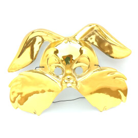 Златна маска на куче 2